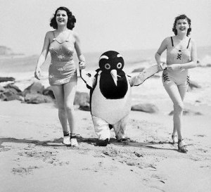 Vintage Snapshots of Summer Fun on the Beach (16)